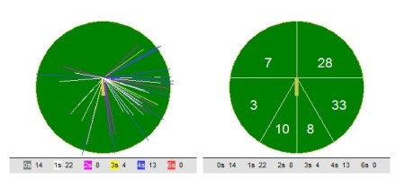 Wagon Wheel of Sian Kelly's innings